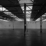 Fiona Banner – by Johanna Caplliure