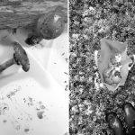 #sea_youhere 2.0 | art and sustainability